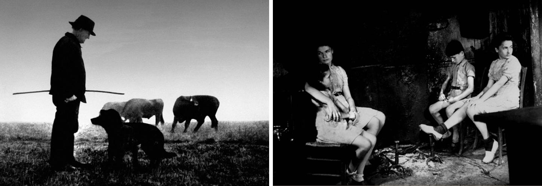 (7) & (8) Farrebique ou Les quatre saisons (Georges Rouquier, 1946)