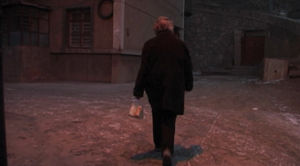 (2) He Fengming [Fengming: A Chinese Memoir] (Wang Bing, 2007)
